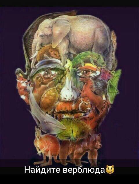 Лицо человека из животных