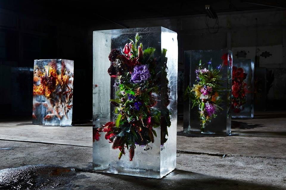 [Image: iced-flowers-makoto-azuma-11.jpg]