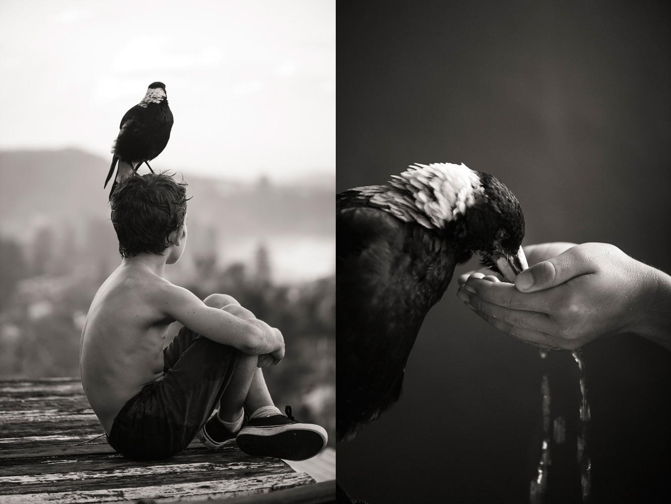любят картинки про птиц и людей таким ответственным